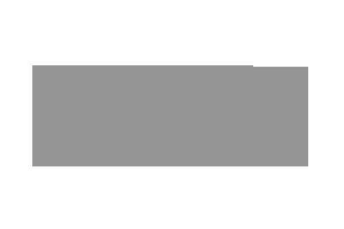 fundacion de servicios de consultoria integral 2005
