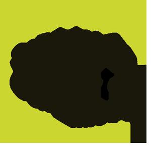 SISTEMA DE GESTIÓN DE LA CALIDAD UNE-EN ISO 9001:2015. REQUISITOS